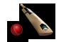 07-cricket